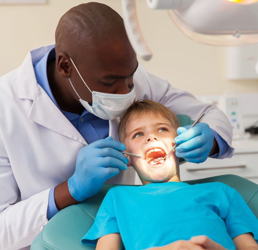 How to Become a Dentist: From Education to Salary Information